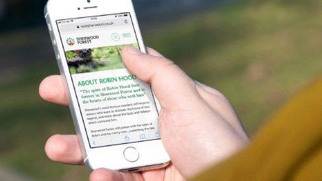 las sherwood ma logo i rozbudowany system identyfikacji wizualnej