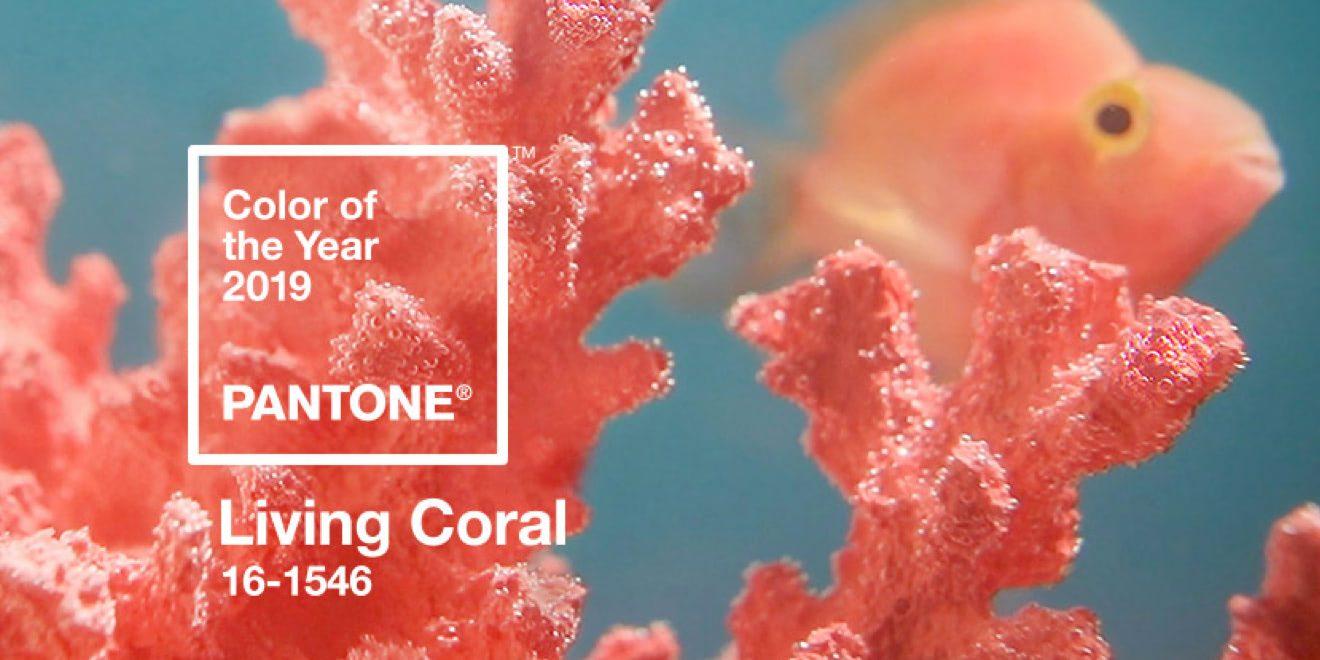 7acd9fdf9e2787 Living Coral: kolor roku Pantone 2019 - Design Alley