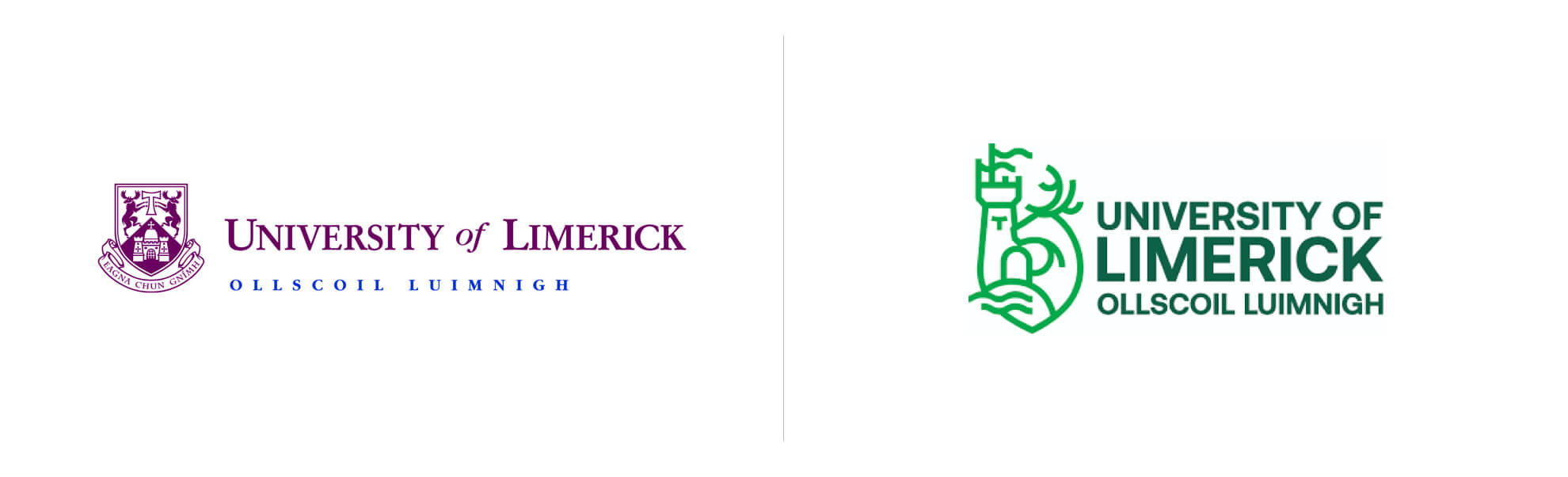 Stare inowe logo Uniwersity of Limerick