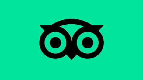 Tripadvisor nowe logo rebrandingiem miesiąca