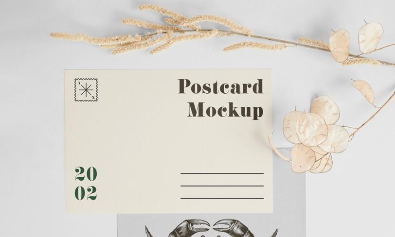 darmowy mockup pocztówki